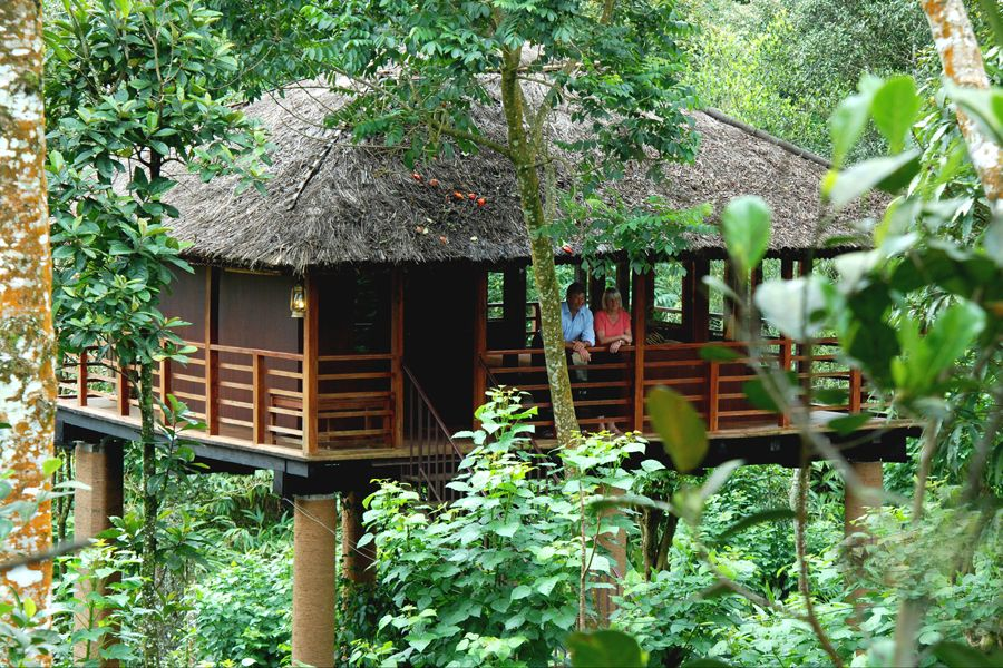 Vythiri Tree Resort Wayanad