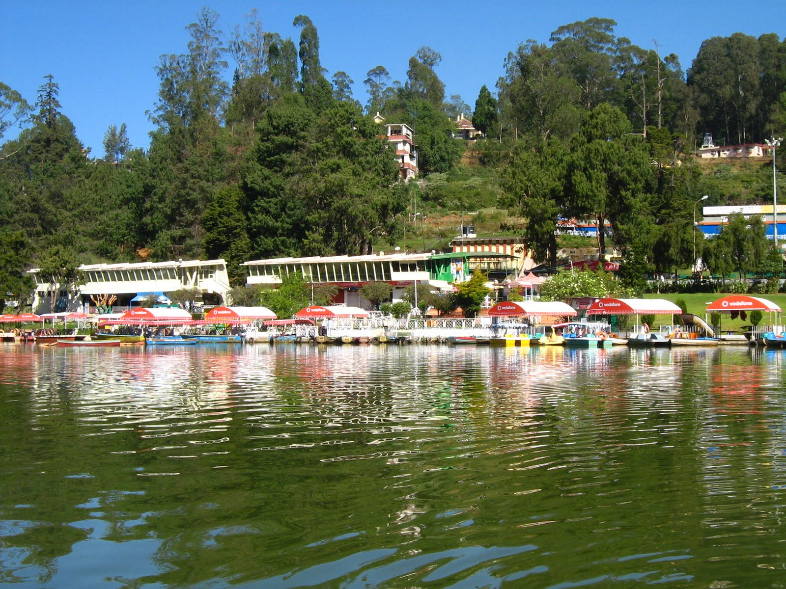 Image result for ooty garden