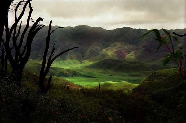 Japfu Peak and Dzukou Valley