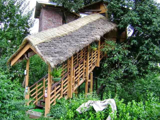 Tree House Resort Manali Tree House Cottages Manali