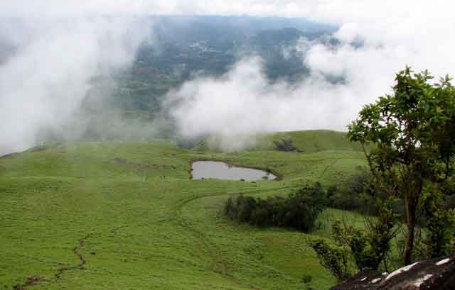 Honeymoon in Wayanad, Kerala