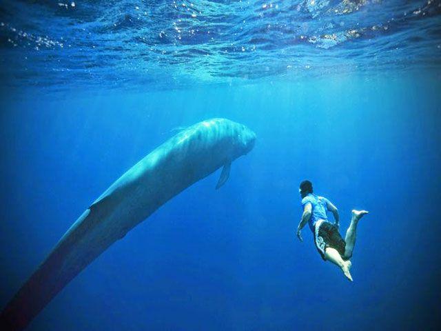 Swimming on the East Coast of Sri Lanka