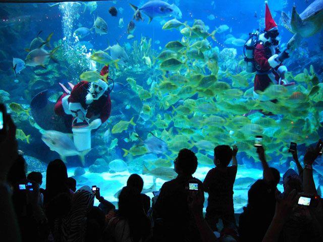 Aquaria KLCC in Malaysia