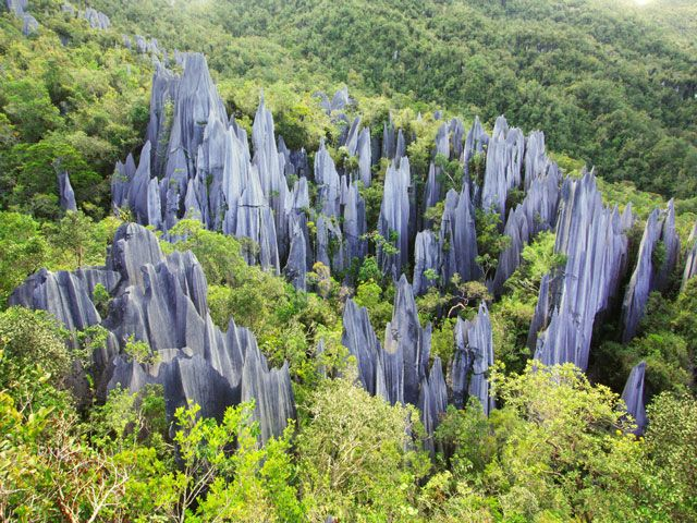 Gunung Mullu national park in Malaysia