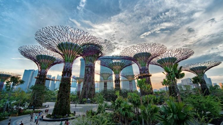 What are the free things to do in Singapore