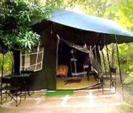 Wildlife Resorts in Panna