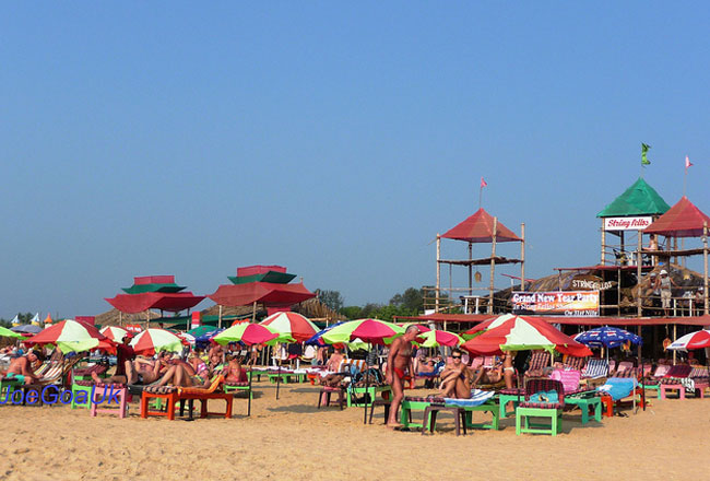 Photo Gallery Of Candolim Beach Goa Explore Candolim