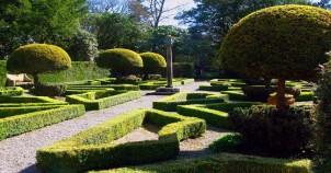Dutch Garden ...
