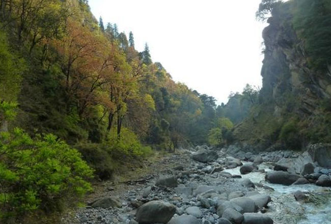 Photo Gallery Of Great Himalayan National Park Explore
