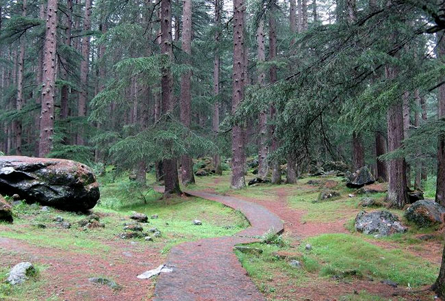 Photo Gallery Of Nature Park Manali Explore Nature Park Manali With Special Attractive Real