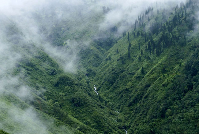 Photo Gallery Of Coorg Hill Station Explore Coorg Hill