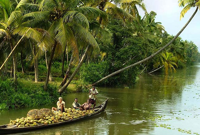 Photo Gallery Of Alappuzha Backwaters Explore Alappuzha