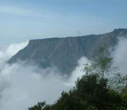 national parks in tamilnadu Brief summary of wildlife sanctuaries and national parks in tamil nadu: indira gandhi wildlife sanctuary and national park the sanctuary is a picture of ecological bliss.