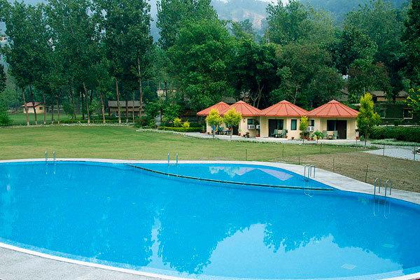 Swimming Pool in Corbett Ramganga Resort