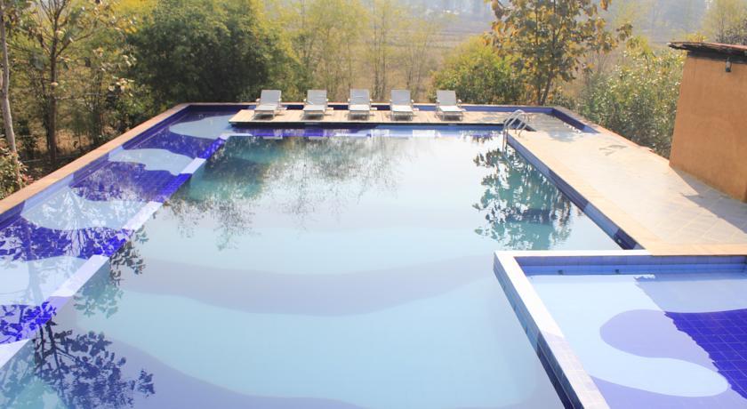 Swimming Pool in Celebration Van Vilas