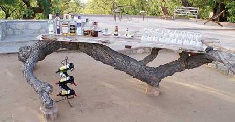 Bar in Chhatrasagar Tent, Pali
