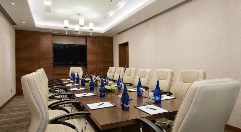 Meeting2 in Hotel Piccadily Janakpuri