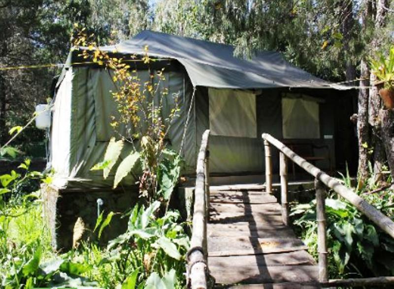 Tent Room in Hotel Fern Creek