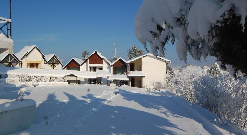 Koti Resort Shimla Hotels In Shimla