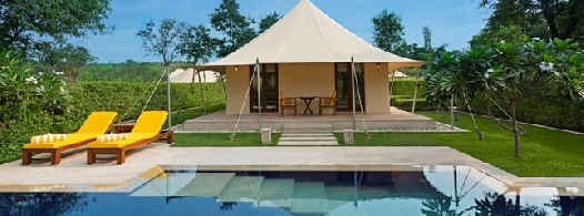 royal-forest-tent