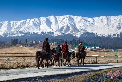 Pony Ride Gulmarg