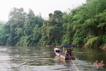 madu river boat safari