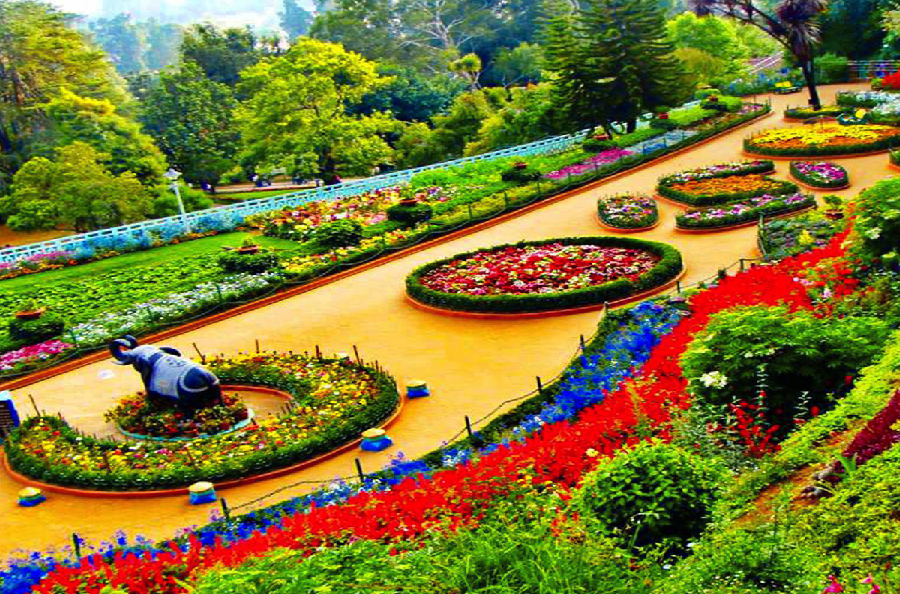 ooty-from-Bangalore-tour-gallery-5