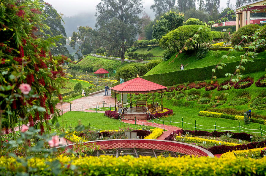 ooty-from-Bangalore-tour-gallery-2