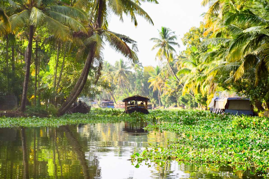 2-days-tour-to-alleppey-from-kochi-gallery-1