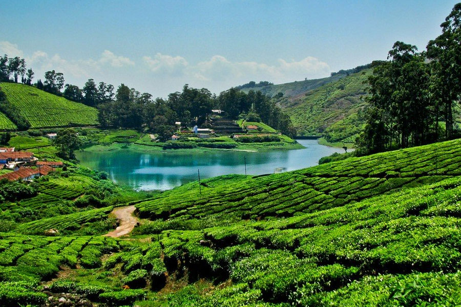romantic-hills-of-south-india-tour-gallery-1