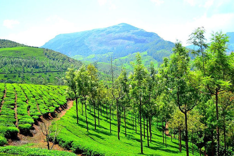 romantic-hills-of-south-india-tour-gallery-2