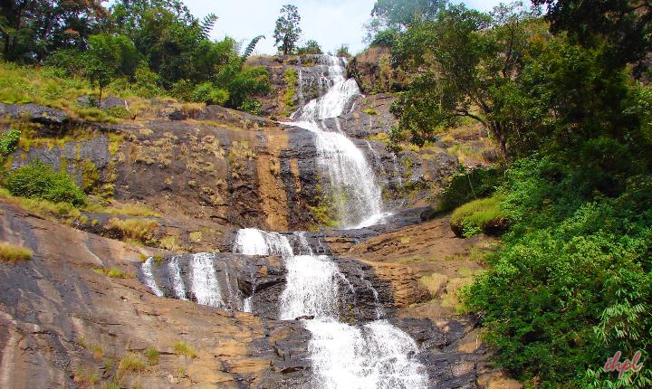 kerala-honeymoon-package-from-hyderabad-3
