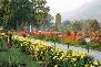 Shalimar Bagh Srinagar