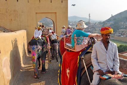 Elephant Amber Fort