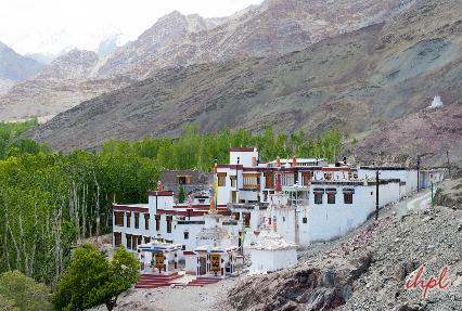 Stok Palace Leh