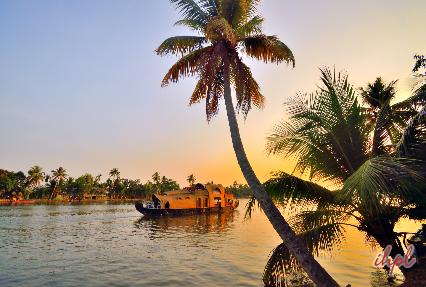 Houseboat Tour in Kerala