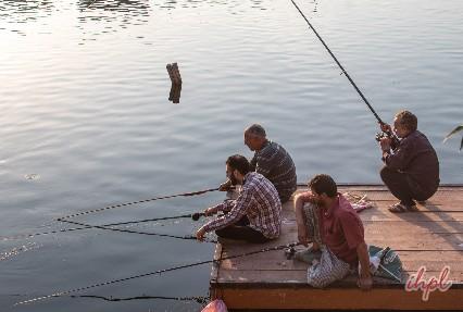 Fishing at Dal Lake Srinagar