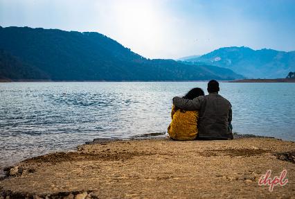 Blackbreasted Parrotbill bird