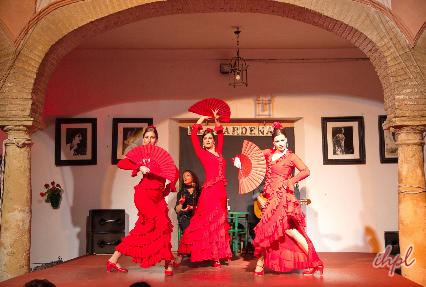 impressive Flamenco Show