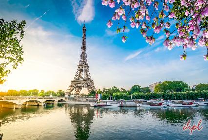 Pont Alexandre III Deck arch bridge in Paris