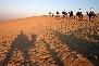 Great-Indian-Thar-Desert