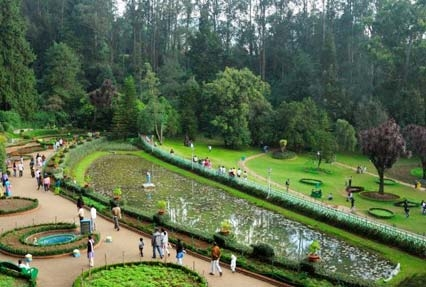 Bandipur With Ooty Tour Package Ihpl