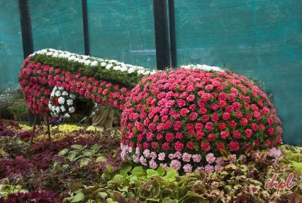 Brindaven garden
