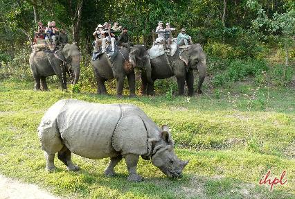 Chitwan National Park.