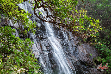 4 Days Romantic Pachmarhi Tour Package Tour Packages In