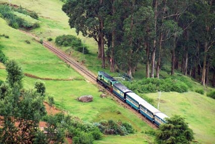 Coonoor Ooty Tour Packages From Coimbatore Ihpl