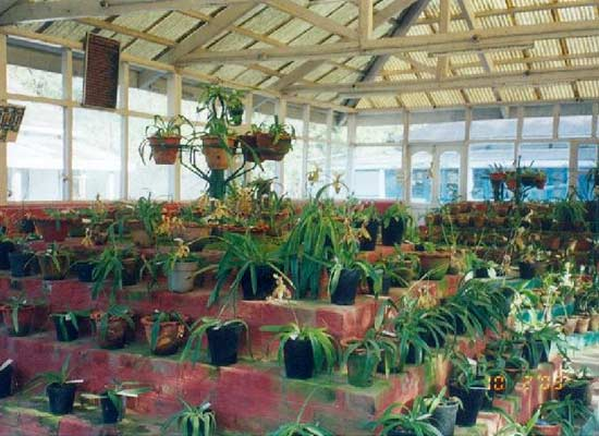 Orchid Research Center at Tipi