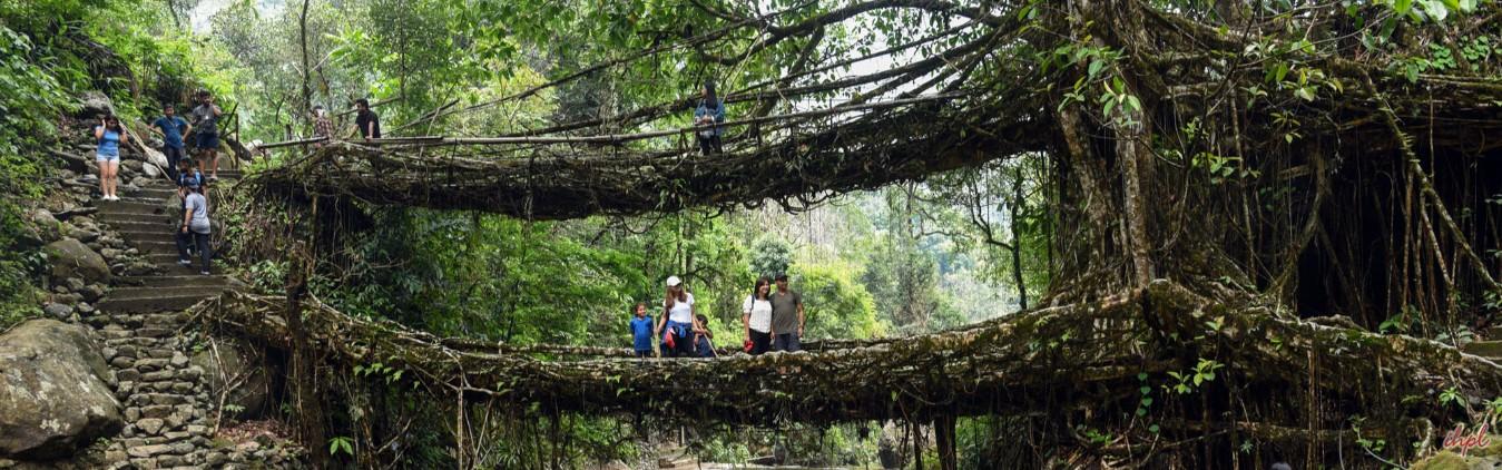waterfalls of Cherrapunji