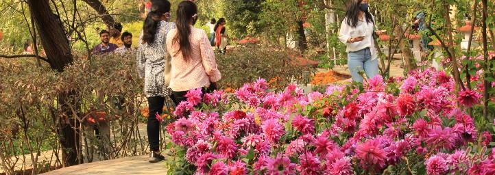 Garden Tourism Festival, festival in delhi