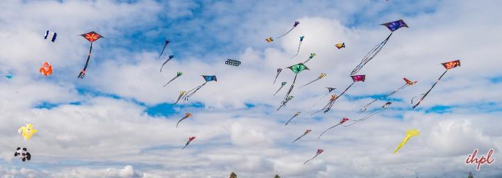 Kite Flying Festival, delhi